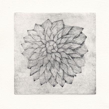 Plaque#3, fleur, tirage04 - eau forte sur zinc, 12,5x12,5cm, 2015