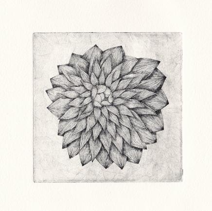 Plaque#3, fleur, tirage05 - eau forte sur zinc, 12,5x12,5cm, 2015