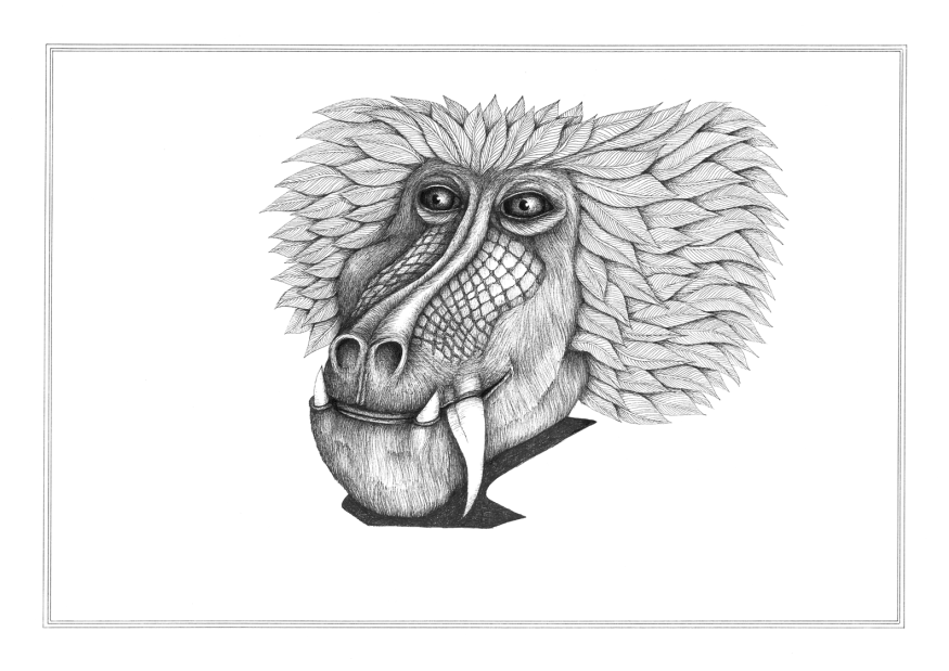 Miroir babouin #1, encre sur papier Canson 224g, A3, mars 2016