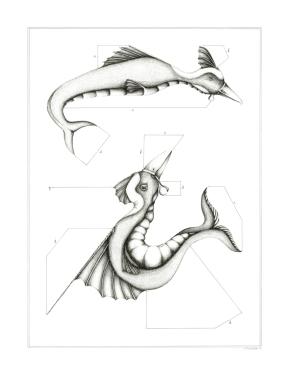 Espèce n°3, encre sur papier, 50 x 65 cm, juillet 2017