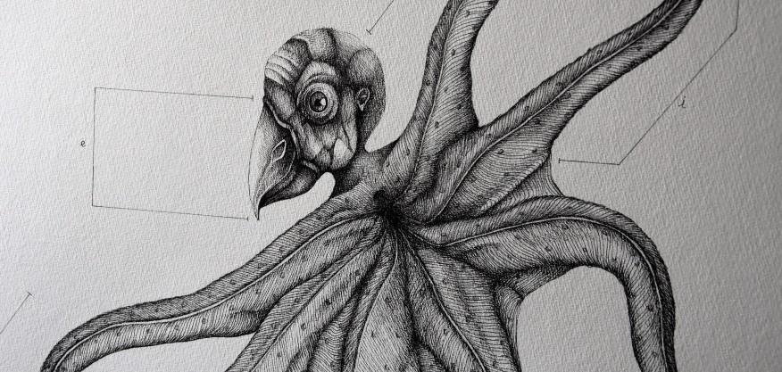 Chimère#1 (détail), encre sur papier, 50x65cm, fev. 2016