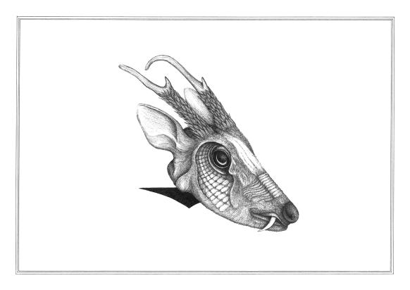 Miroir Munjac #1, encre pigmentaire sur papier Canson 224g, A3, mars 2016