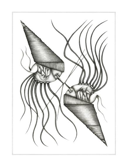 Espèce n°5, encre sur papier, 50 x 65 cm, septembre 2017