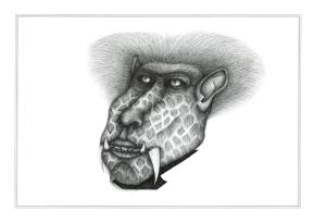 Miroir babouin #3, encre sur papier Canson à grain 224g, A3, février 2017