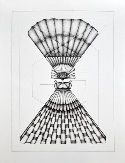 Espèce n°6, encre sur papier, 50 x 65 cm, septembre 2020